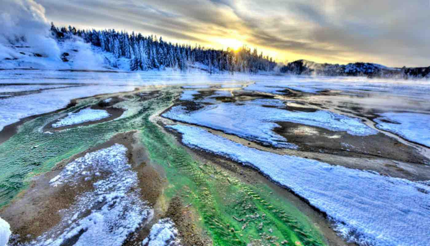 Yellowstone National Park, Wyoming/Montana/Idaho  | GolfShire HOmes